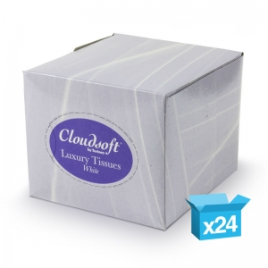 2ply white facial tissues 70sh cube