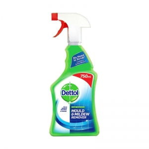 Dettol Mould & Mildew Remover 750ml